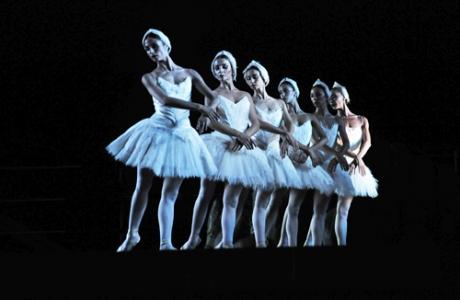 Teatro dell'Opera di Roma - ''Swan lake'